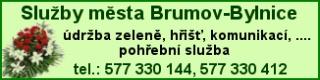 Sluzby mesta Brumov-Bylnice